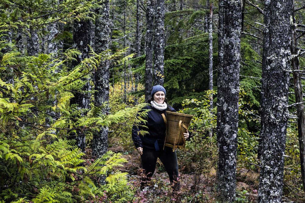 A smiling Isabelle emerges out of the bog where we were harvesting some Labrador tea and yellow-foot chanterelles.
