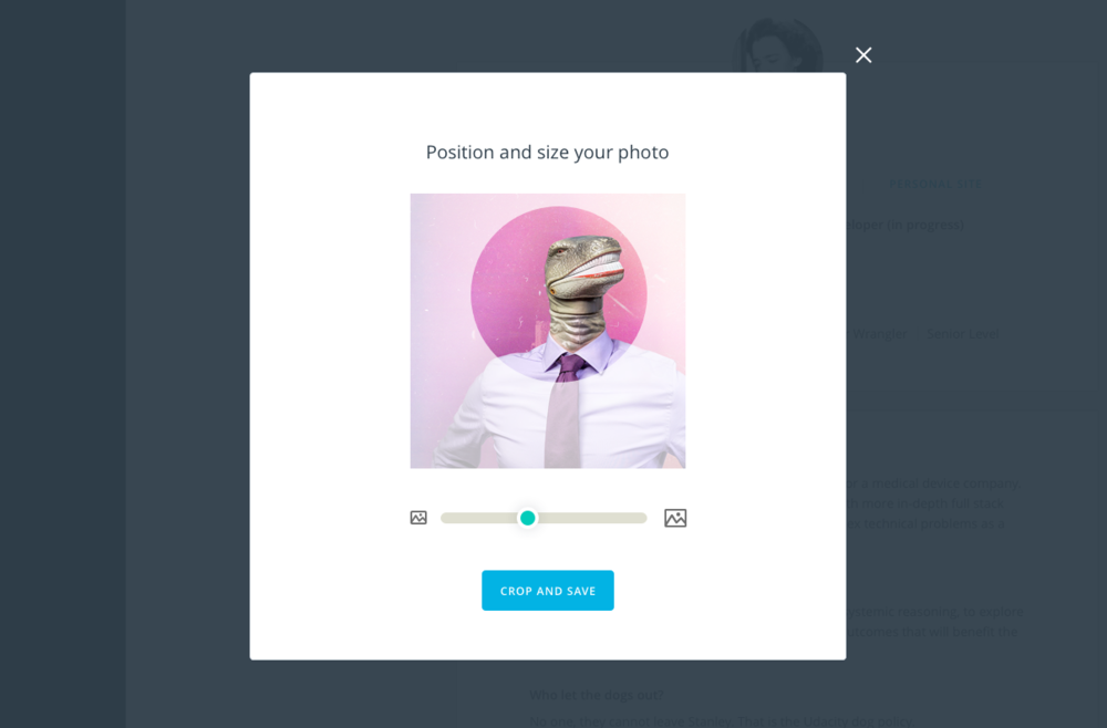 A simplified photo cropping tool helps students crop and position their avatar photo to look great in a circle.