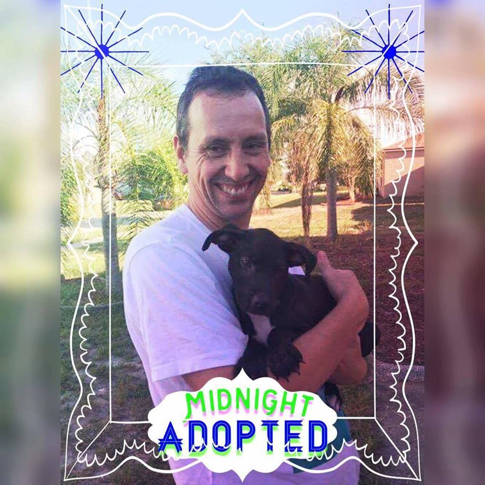 Midnight Adoption Pic.jpg