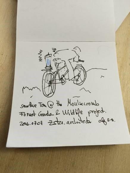 Alej sketch.jpg