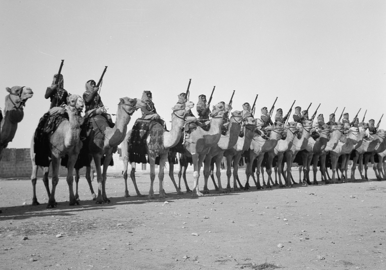 The Arab legion