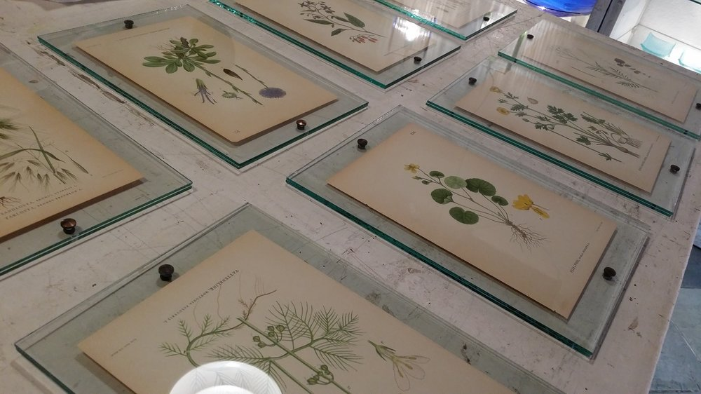 studiosilice-handmade-glass-frames.jpg