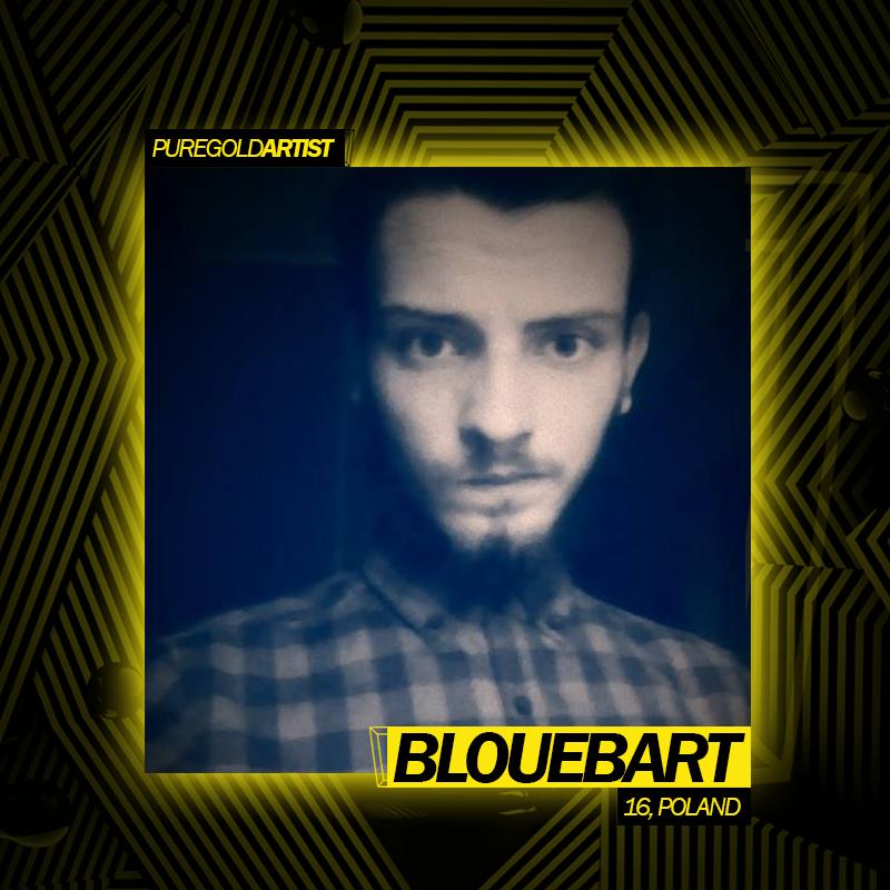 BloueBart Portfolio.png