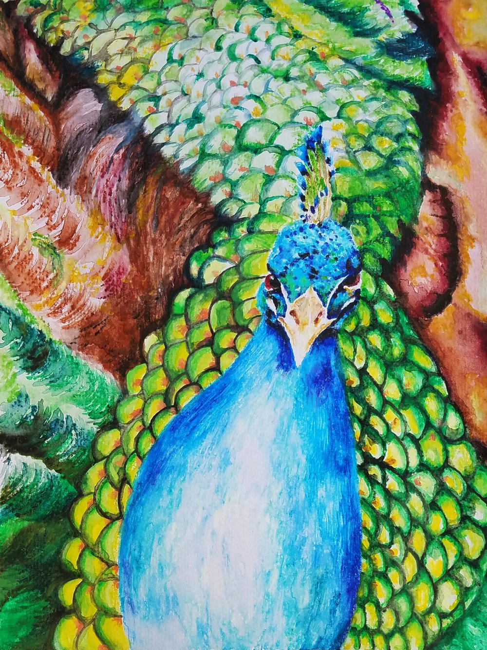 The Piquant Peacock - He's but a shimmer of plumes and feathers -A kaleidoscope of colors that seduce our eyes.