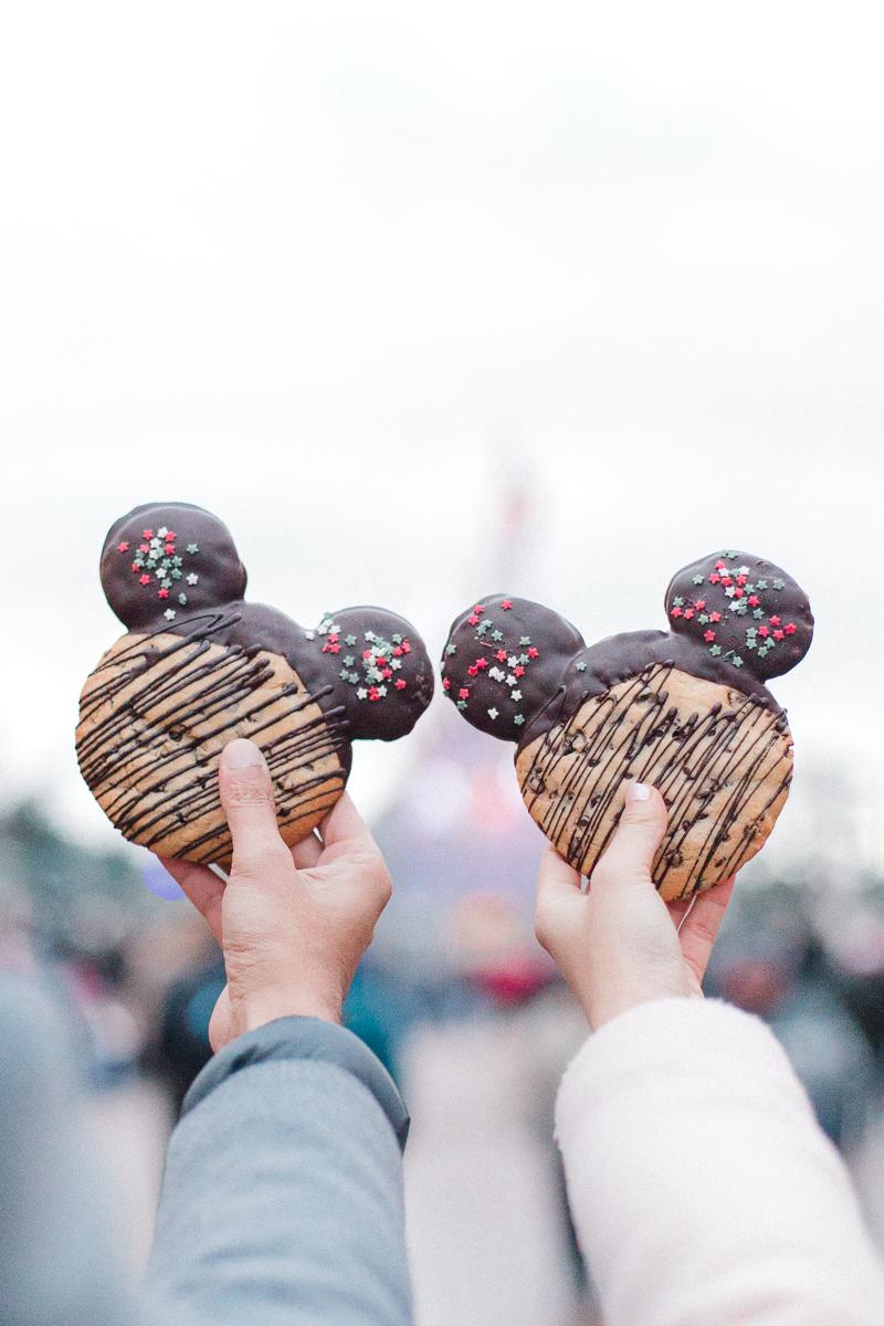 Chen Sands Paris Photographer Disneyland in Winter Engagement 23.jpg