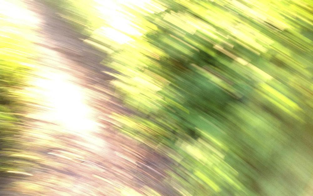 Kuvassa näkyy epätarkkoina, tunnistamattomina läikkinä vihreää lehvästöä ja kirkkaita kellanvalkoisia valojuovia.