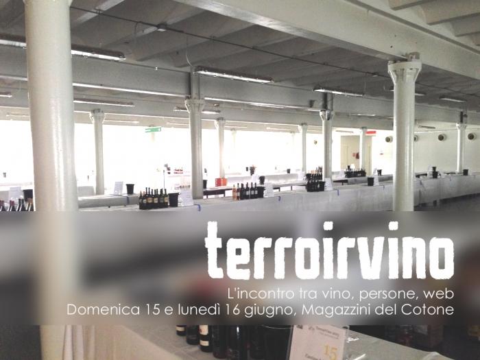 TerroirVino 2014