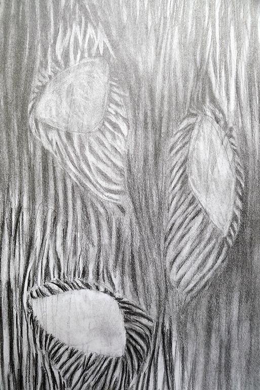 "Knots  10"" x 6.5"", graphite on paper, 2015"