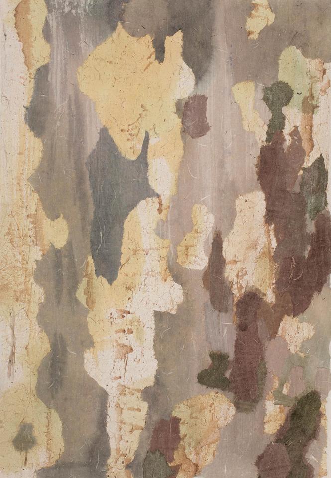 """Tree Bark 4  28"""" x 20"""", mixed media on rice paper, 2013"""