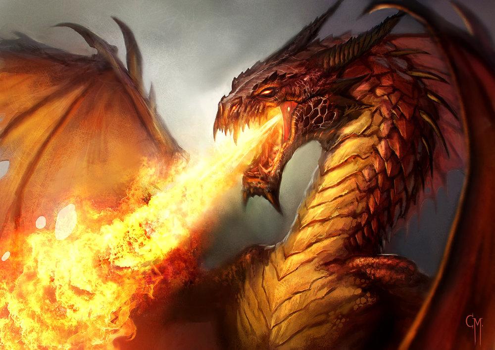 314224-red-dragon.jpg