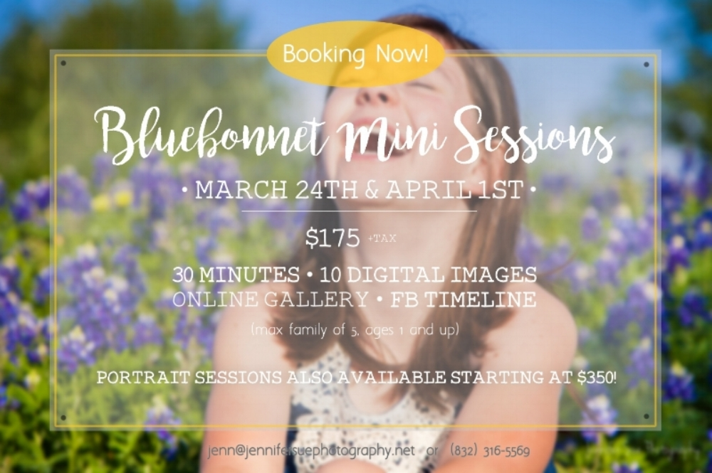 Click the image above to book a Bluebonnet Mini Session with JSP!