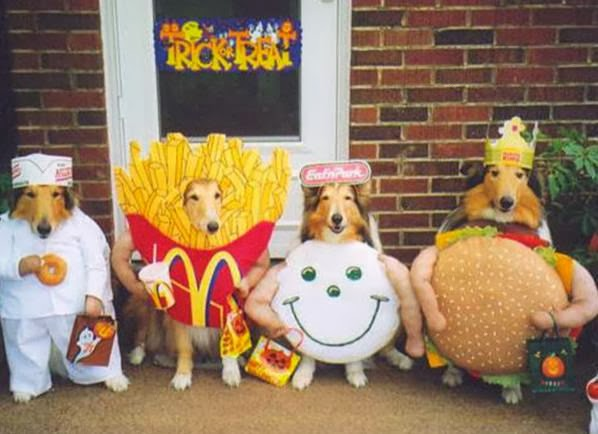 dogs-in-halloween-costumes