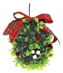 Holiday Pet Hazard - Mistletoe