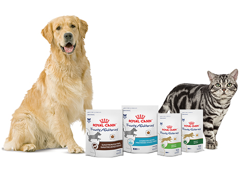Source: www.royalcanin.com