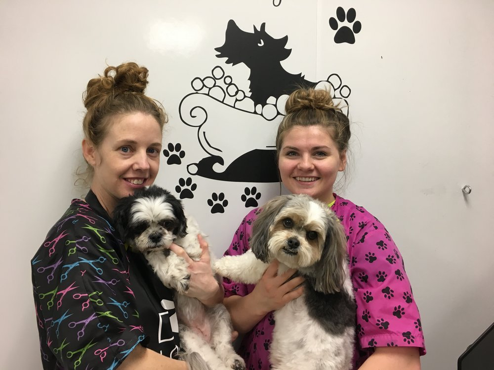 Pet grooming at Badger Veterinary Hospital with Cassie Howard and Emily Metcalf