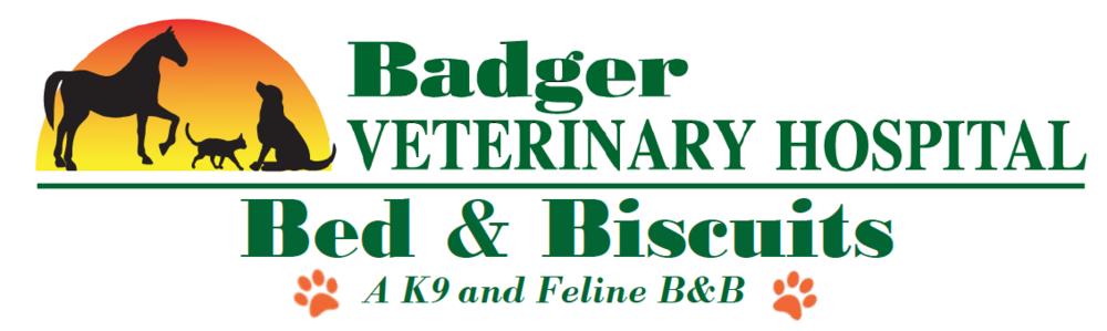 Pet Boarding at Badger Veterinary Hospital in Janesville, Wisconsin