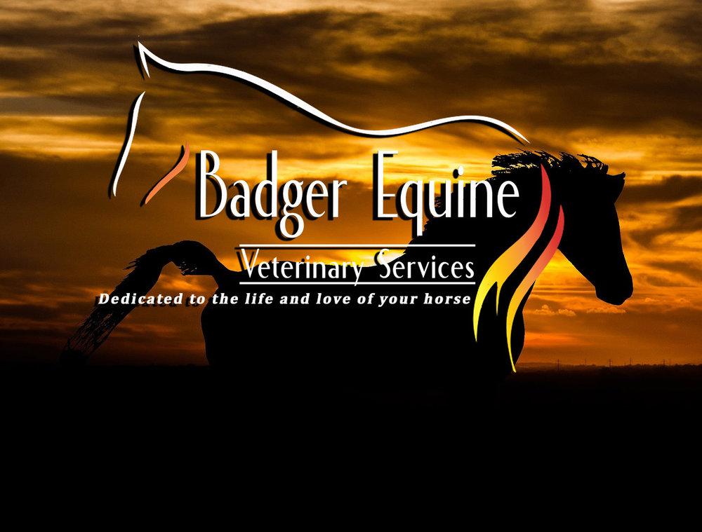 Equine banner.jpg