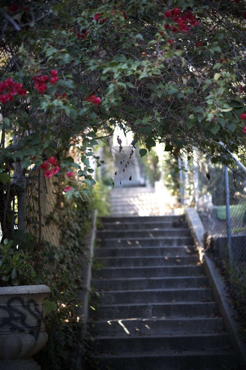 022310 la mag stairs165.jpg