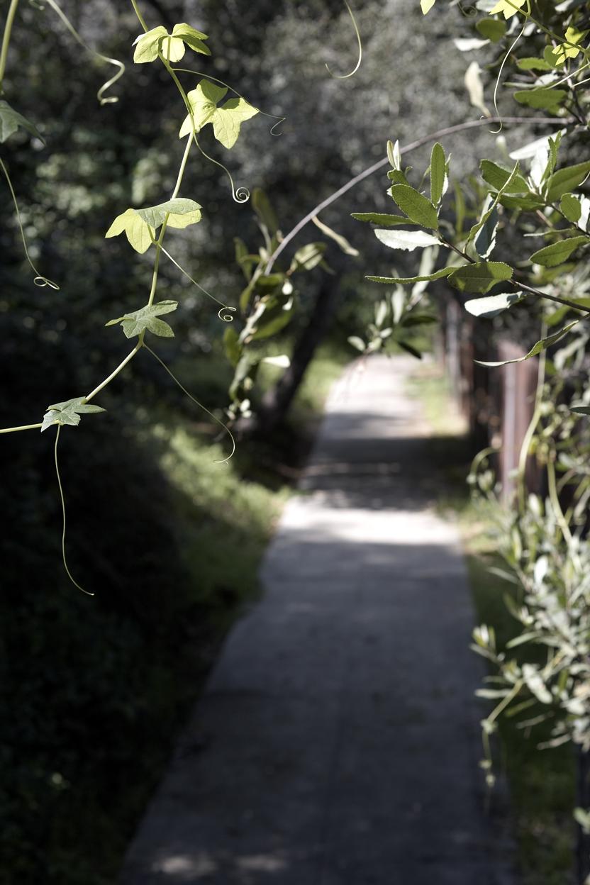 022310 la mag stairs440.jpg
