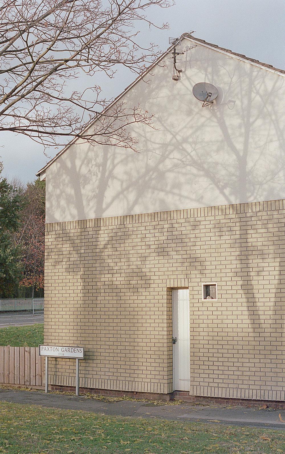 (INSTA) TreeShadows_35mm_Colour_Roll 5_017.jpg