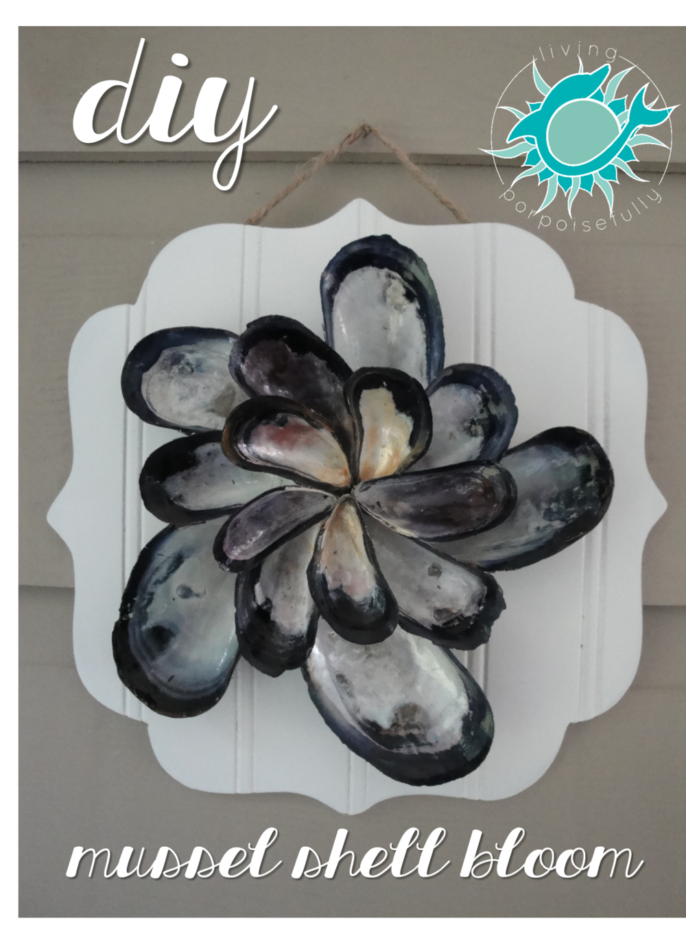 Mussel Bloom