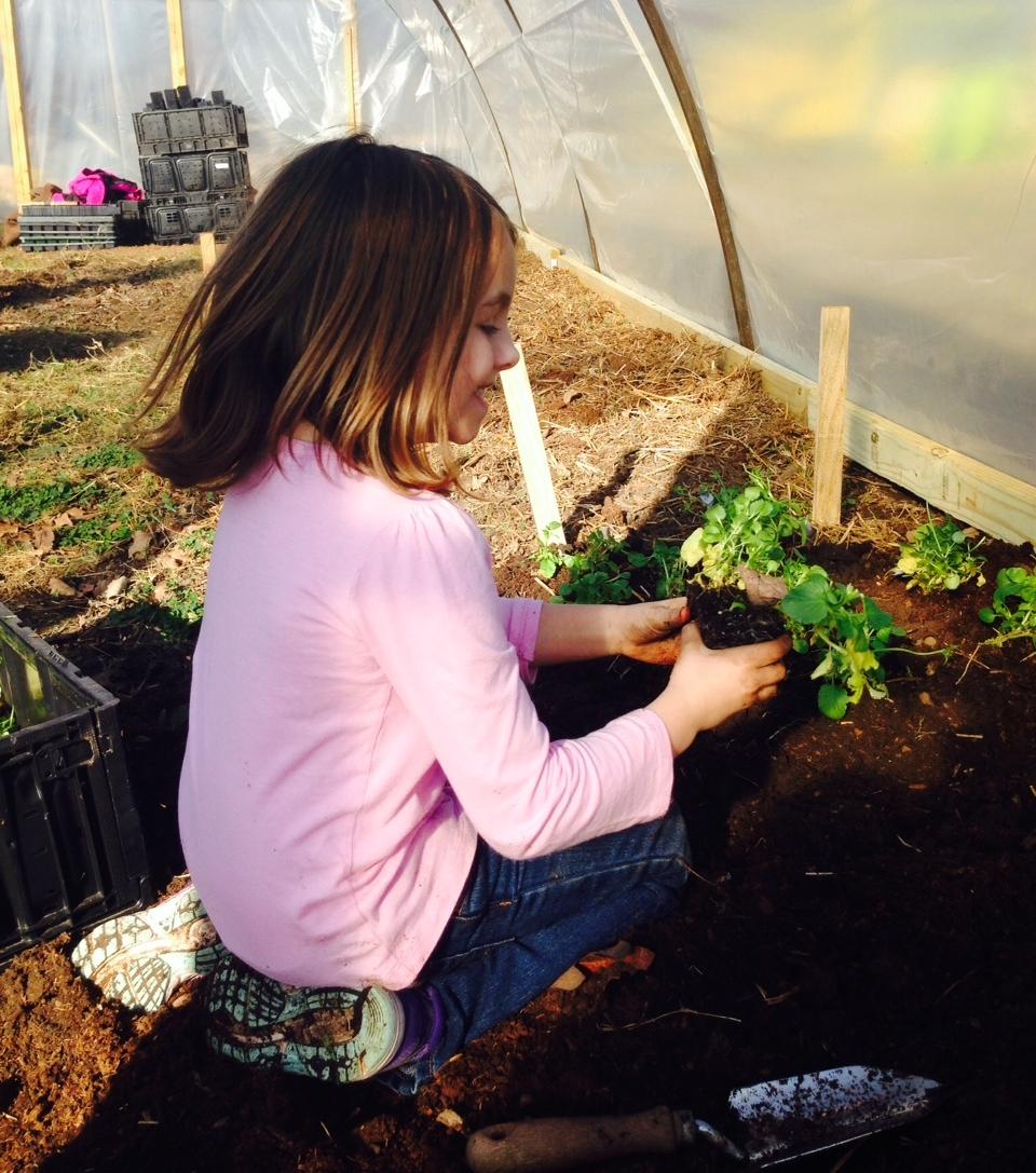 Gardening volunteer Bella Morrison.JPG