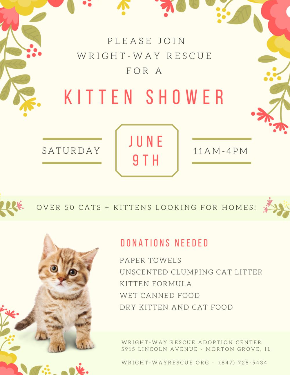 Kitten Shower 2018.png