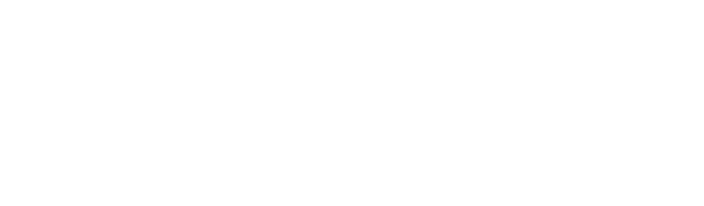 CX Systems Strategy