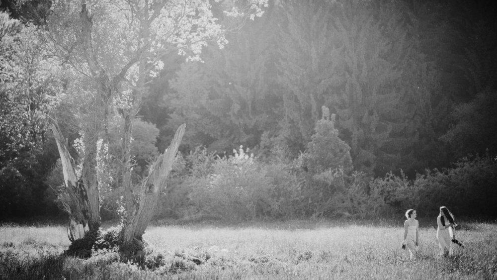 - Digitální fotky dostanete online přes Dropbox, kde budou minimálně rok zálohované.Vytvořím pro vás zaheslovanou online galerii pro pohodlné prohlížení a sdílení s rodinou a přáteli.Digitálnífotografie zvládnu zpracovat do 7 týdnů(prvních 5 fotek obdržíte do 5 dnů).Doprava Jihomoravský kraj zdarma, ČR 6kč/km.Osobní schůzka zdarma v Brně nebo v Uherském Hradišti