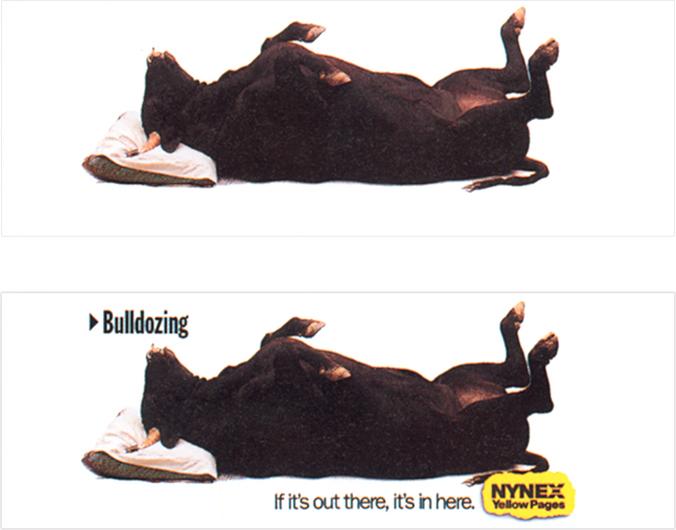 Nynex-Bulldozing8872727460135638054.jpg