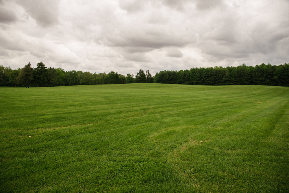Large Field