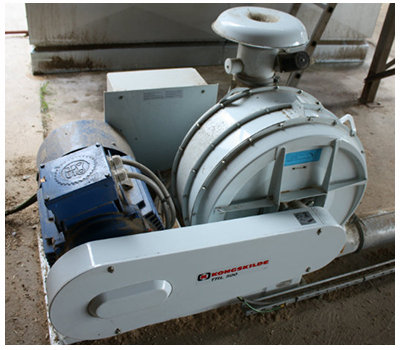 High pressure blowers - TRL 60 Hz