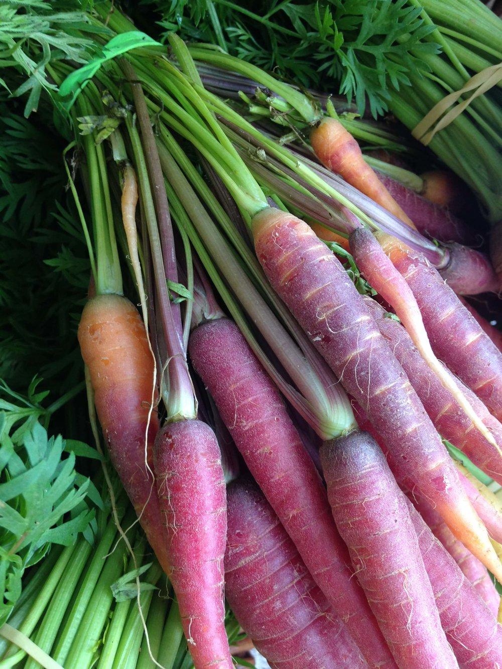 purple carrots at farmers market Ellensburg, WA