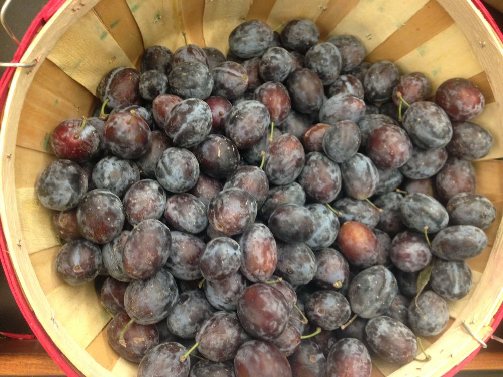 Plums in basket. Nutrient density of foods is important following weight loss surgery.