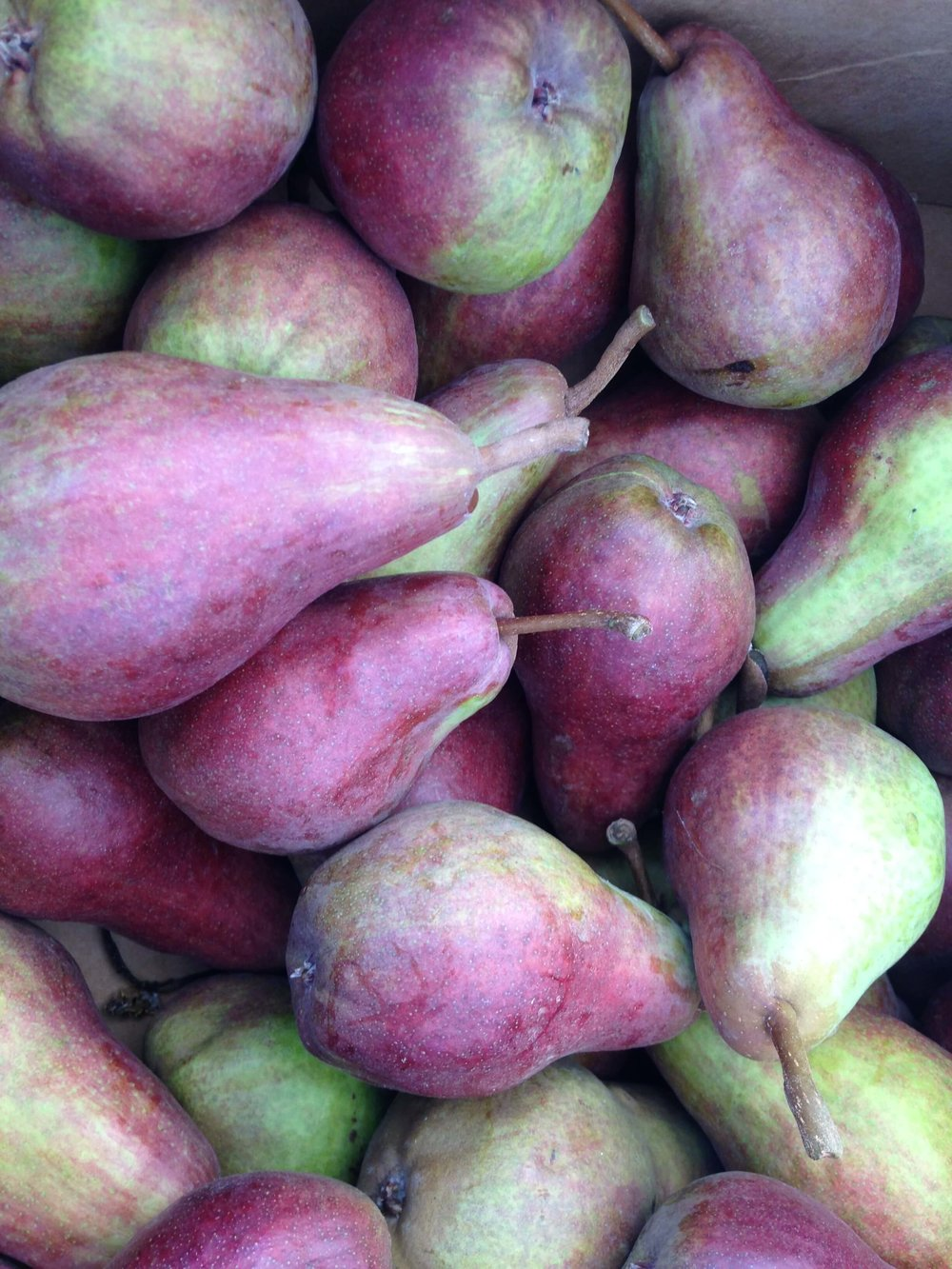 Purple and green pears contain fiber and carbohydrate to help balance blood sugars in diabetic diet.