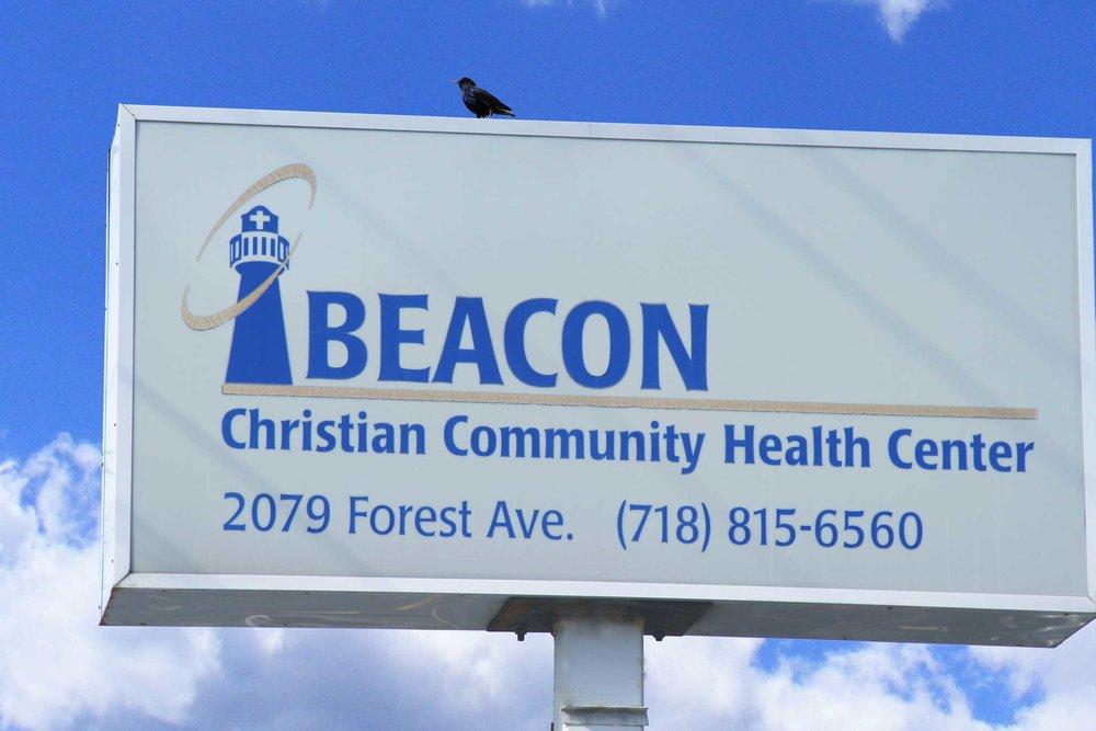 Beaconbird3.jpg