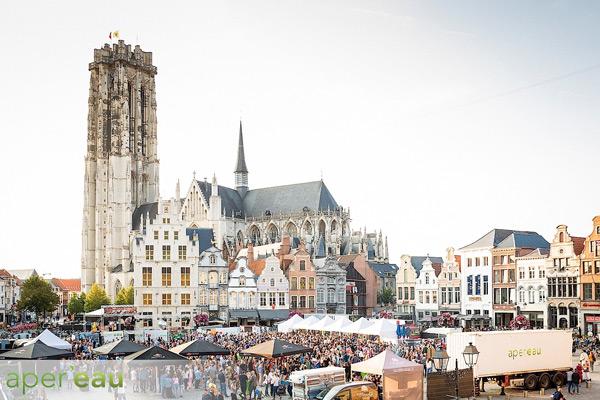 WM-118Apereau-Mechelen-118.jpg.jpg