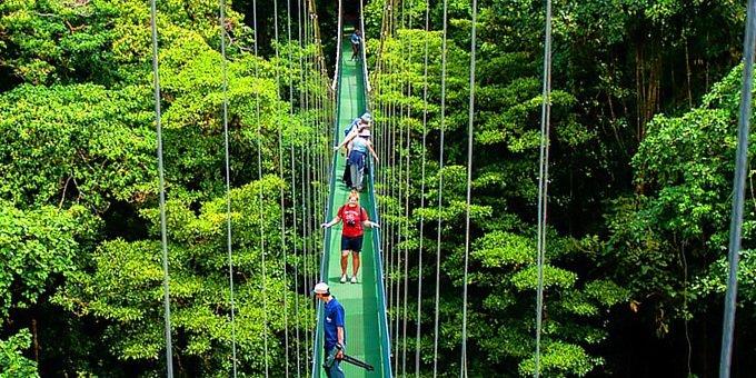 Monteverde.jpg