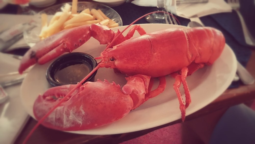 maine lobsta, ya'll