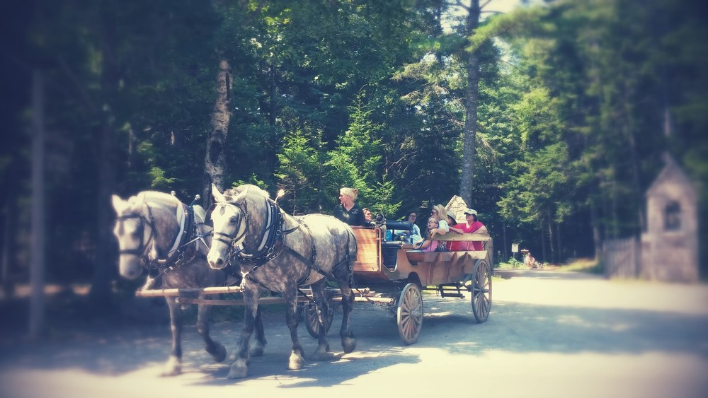 passing a horse and buggy