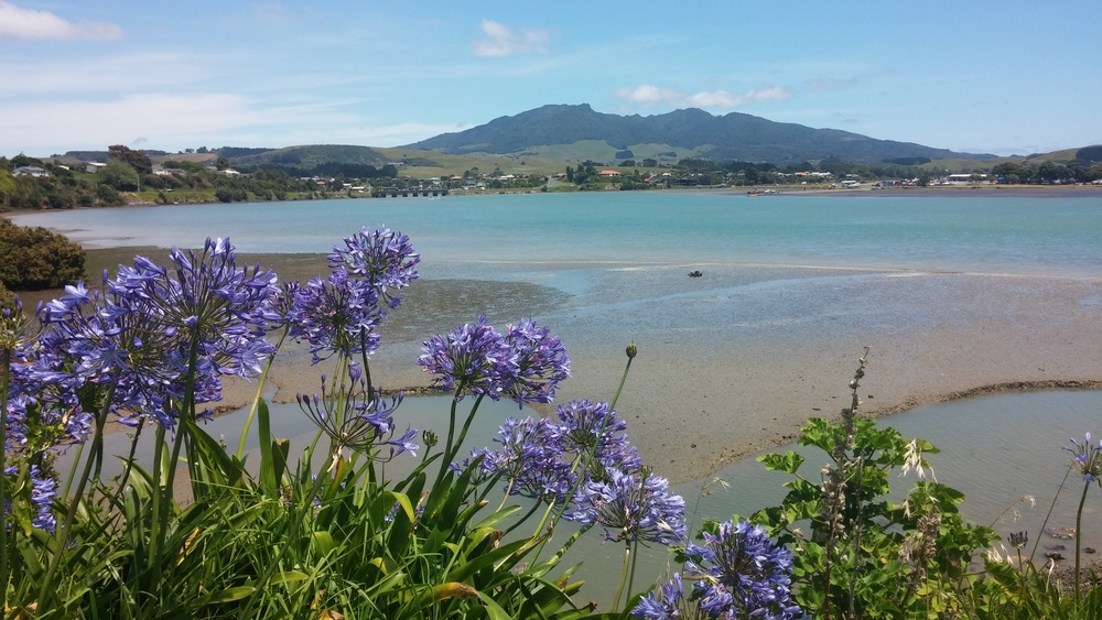 Low tide in Raglan.