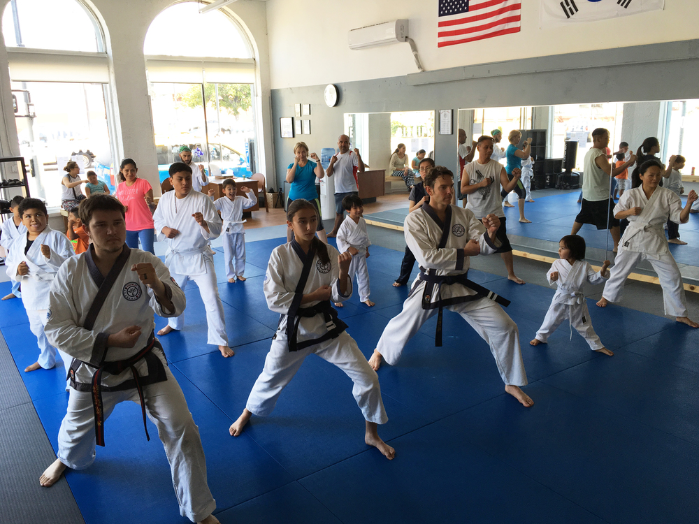 Family karate class!