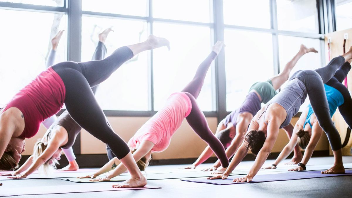 Communication on this topic: Introduction to Vinyasa Flow Yoga, introduction-to-vinyasa-flow-yoga/