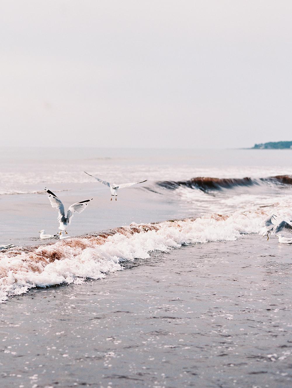 Maine_116.jpg