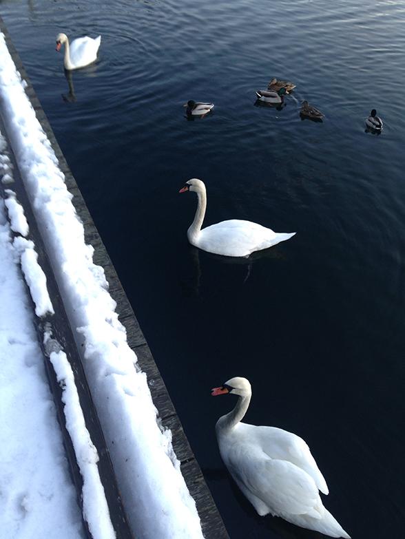 Norway_016.jpg