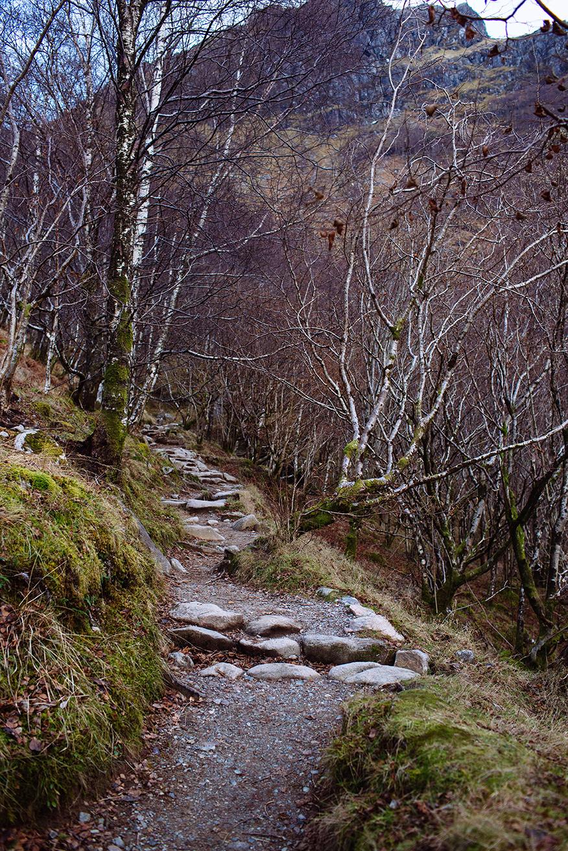 Scotland Fall 2016_0378.jpg