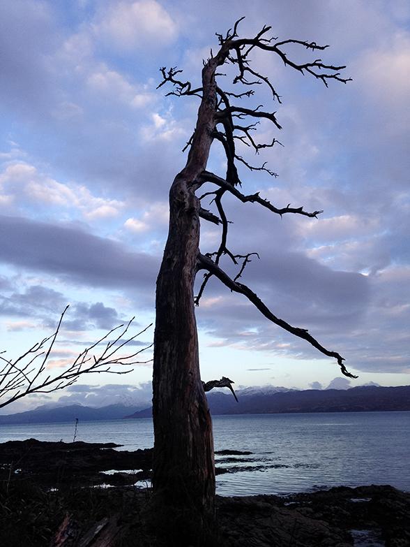 Scotland_135.jpg