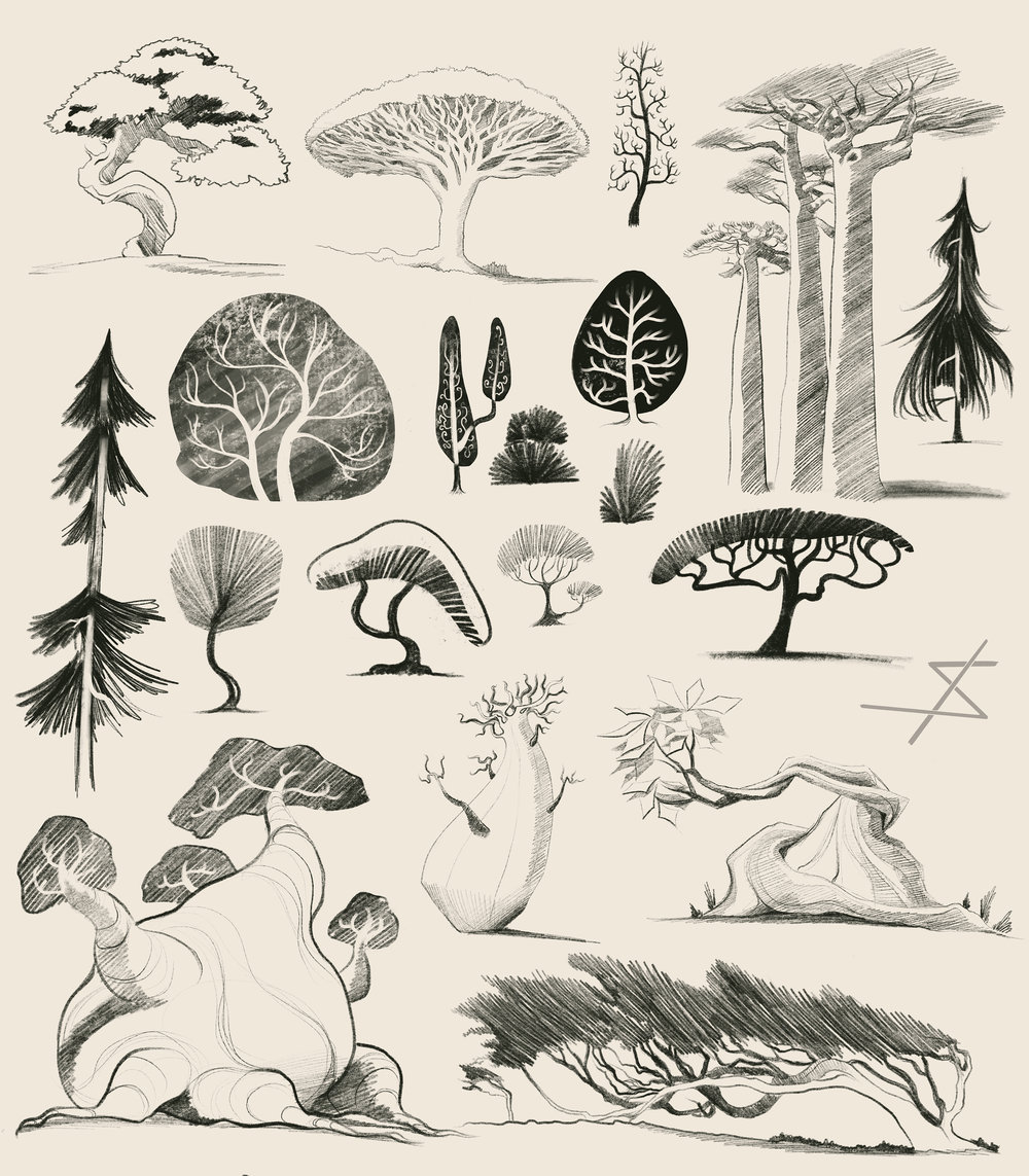 Sampling of my January tree sketches.