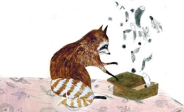 raccoon-e1416422254373.jpg