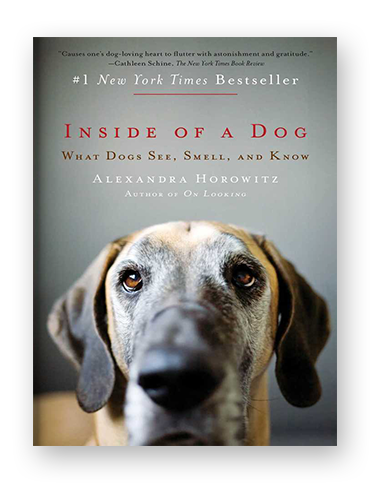 Inside of a Dog on Scribd